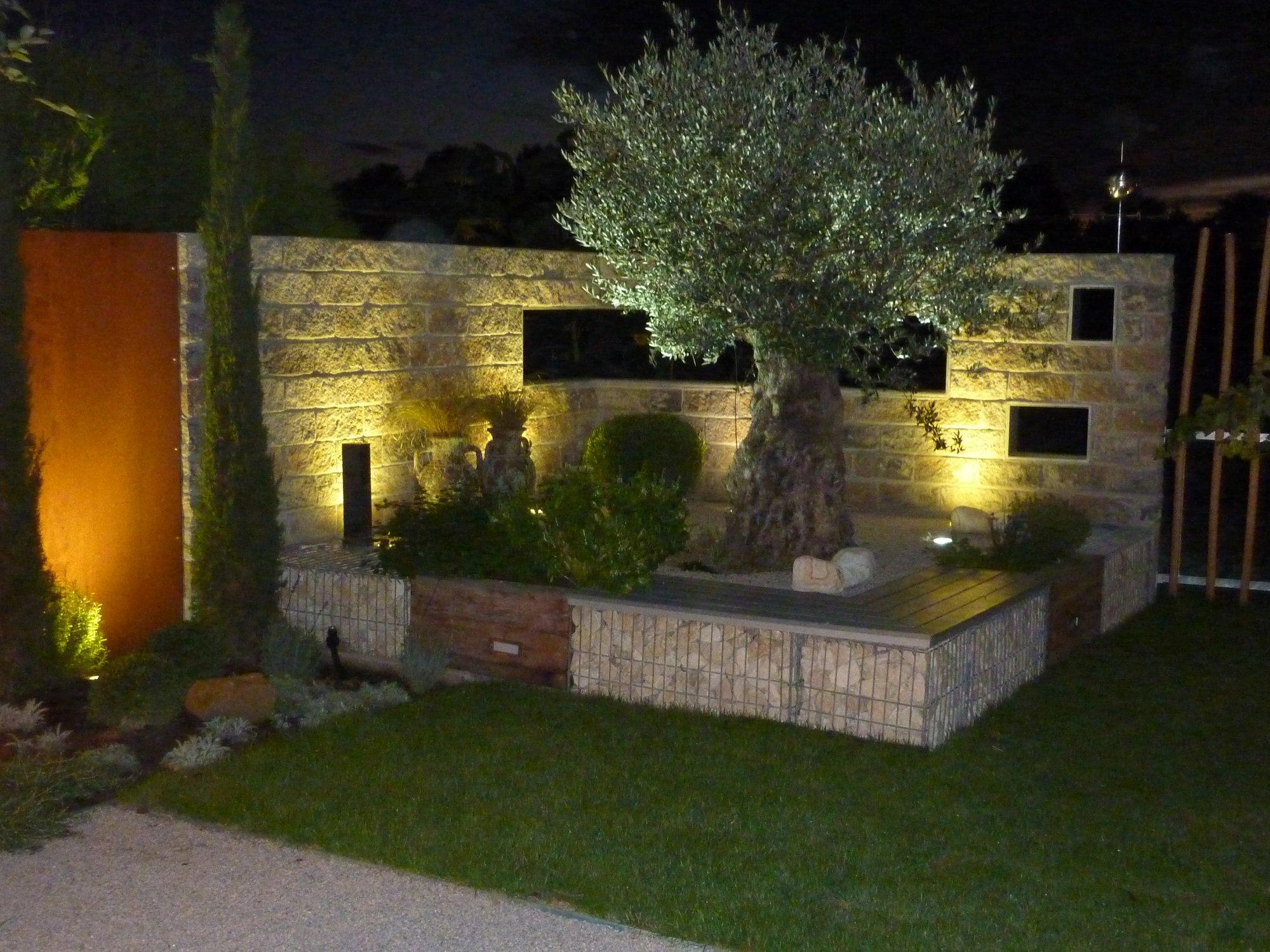 olivenbaum besser einpflanzen oder nicht seite 2 grillforum und bbq. Black Bedroom Furniture Sets. Home Design Ideas
