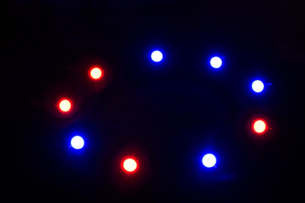 Pflanzenlicht-6.jpg