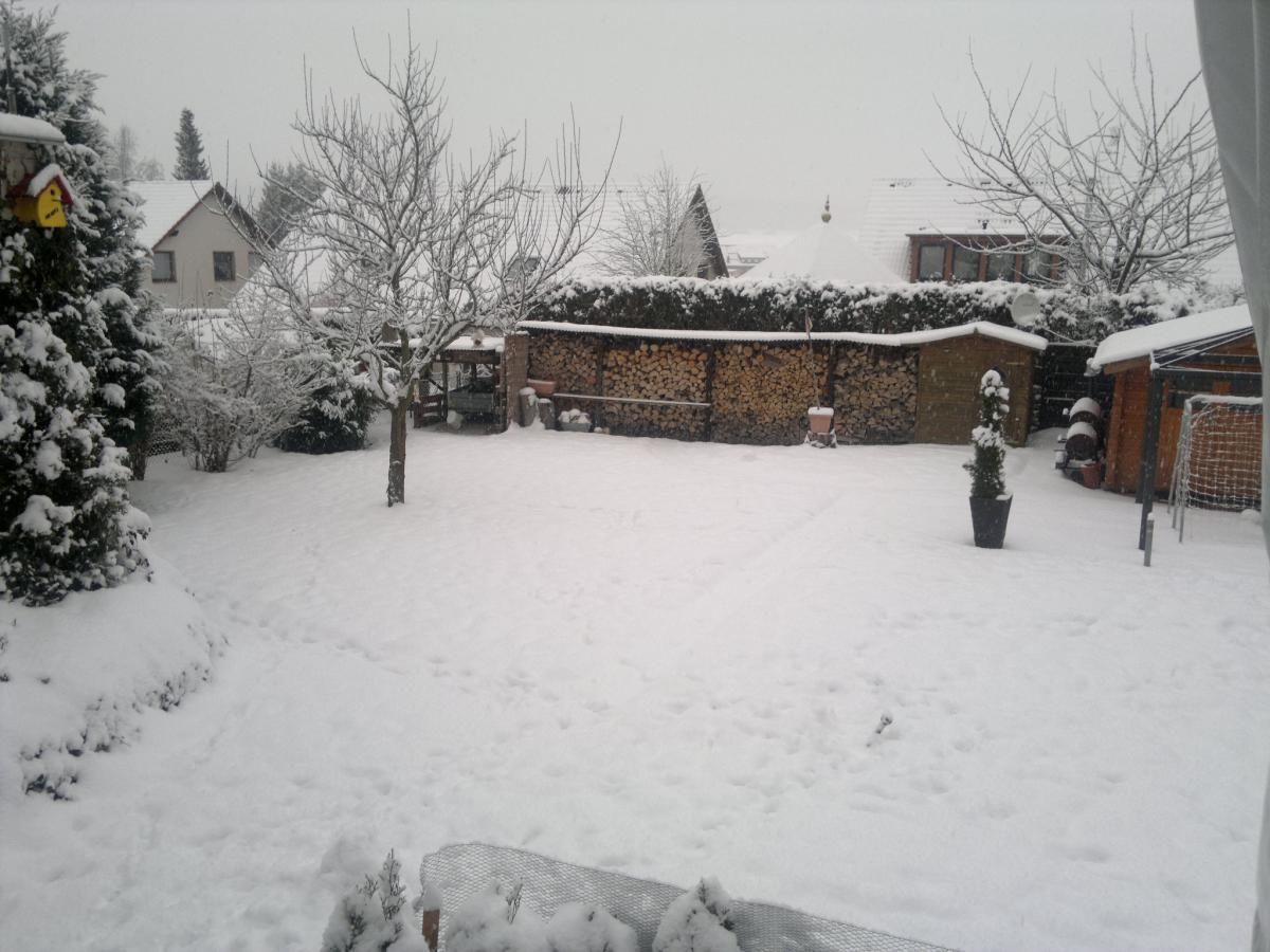 Snow_in_the_garden (1).jpg