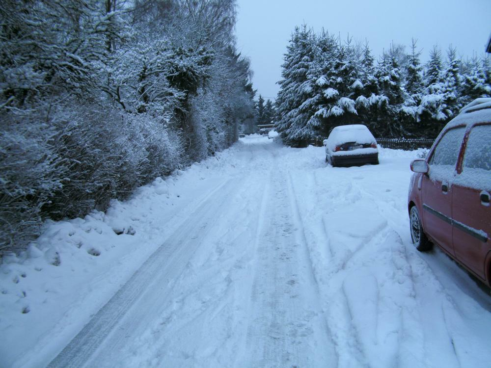 Winter 2010 klein.jpg