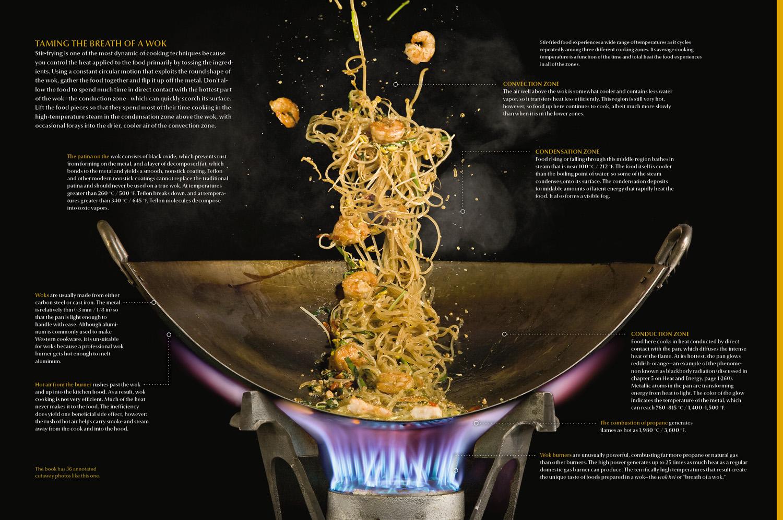 wok cutaway_1500 pixels.jpg