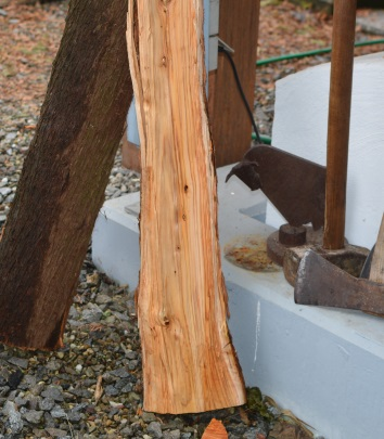 Thuja Holz Verwendung brennholz sind zedernhölzer oder besser thuja für den hbo geeignet